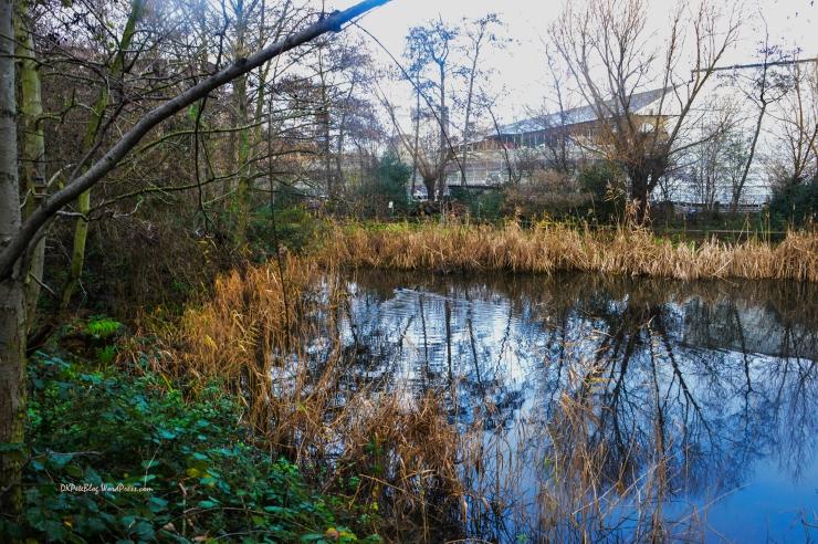 Camley Park-0358-2